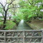 玉川上水緑道 - 東京都立川市 -